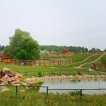 Парк птиц «Воробьи» — кто щебечет, а кто и хрюкает
