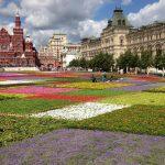 Ковер из живых цветов на Красной площади